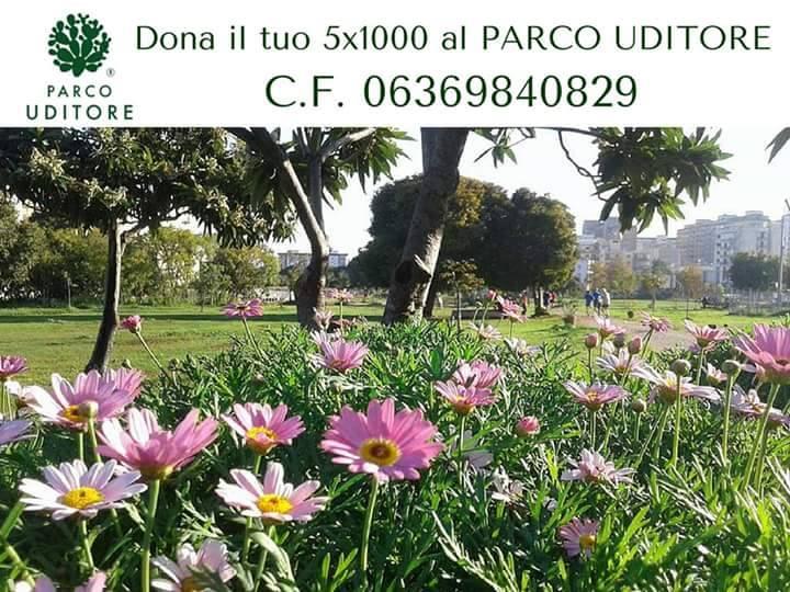14628072_10210153381298377_627128892_n
